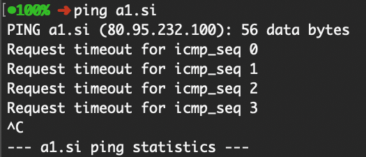 Statičen ali dinamičen IP naslov?
