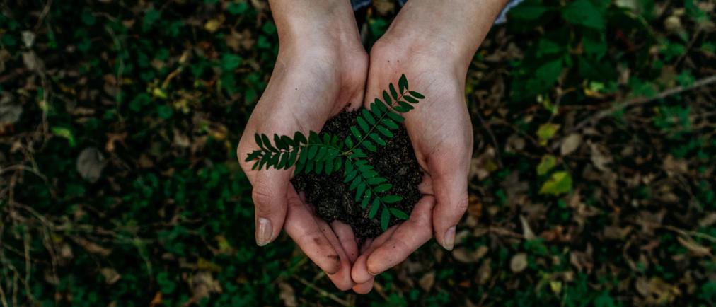 App van de week: Ecosia