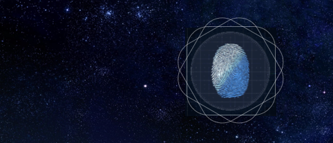 Everything about Fingerprint Identification