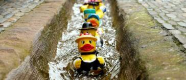 Alternative Suchmaschinen - mit DuckDuckGo an der Filterblase vorbei!